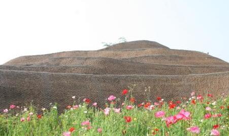 四川三星堆祭祀坑发掘30周年:让普通人看懂古遗址