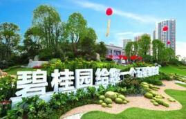 碧桂园3月20日公布2017年业绩 集团实现总收入约2269亿元