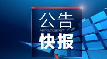 5月18日晚间公告精选:*ST云网控股权将在淘宝网公开拍卖 江苏银行、报喜鸟等获大股东增持