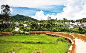 海南省政府办公厅印发《海南省深化生态环境六大专项整治行动计划》