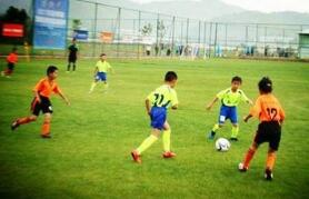 教育部办公厅印发《全国青少年校园足球改革试验区基本要求(试行)》