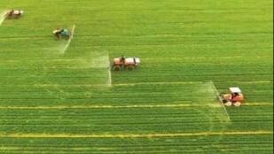 农业农村部:力争到2020年化肥农药使用量实现负增长