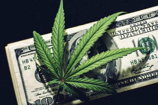 大麻股这一年本应该大放异彩 却不料集体哑火