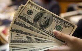 罗牛山:10月生猪销售收入环比增长近43%