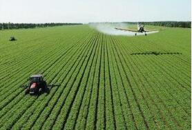 农业农村部:要千方百计加快生猪生产恢复发展