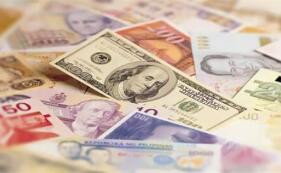 外国投资者对巴税收贡献1.2万亿卢比