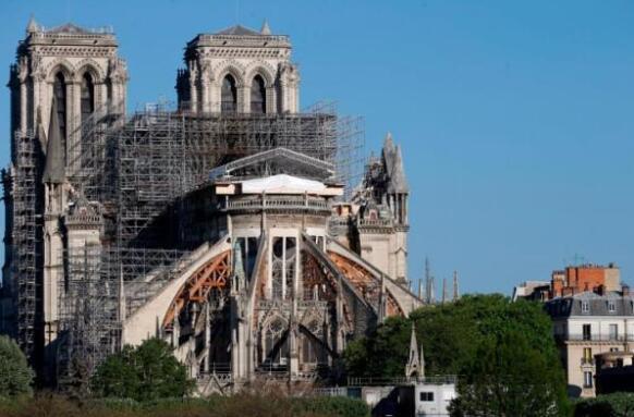 英媒:百年橡树将被砍伐以重建巴黎圣母院